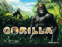 Игровой автомат Gorilla в казино