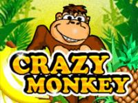 Crazy Monkey в Вулкане с бонусом